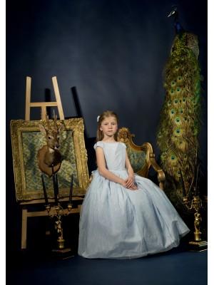 Charming dress blue